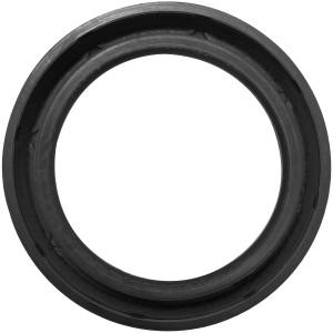 Timer Frig. Dryer. M. 131225300